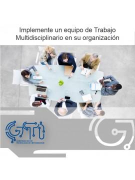 Implemente un equipo de Trabajo Multidisciplinario en su organización